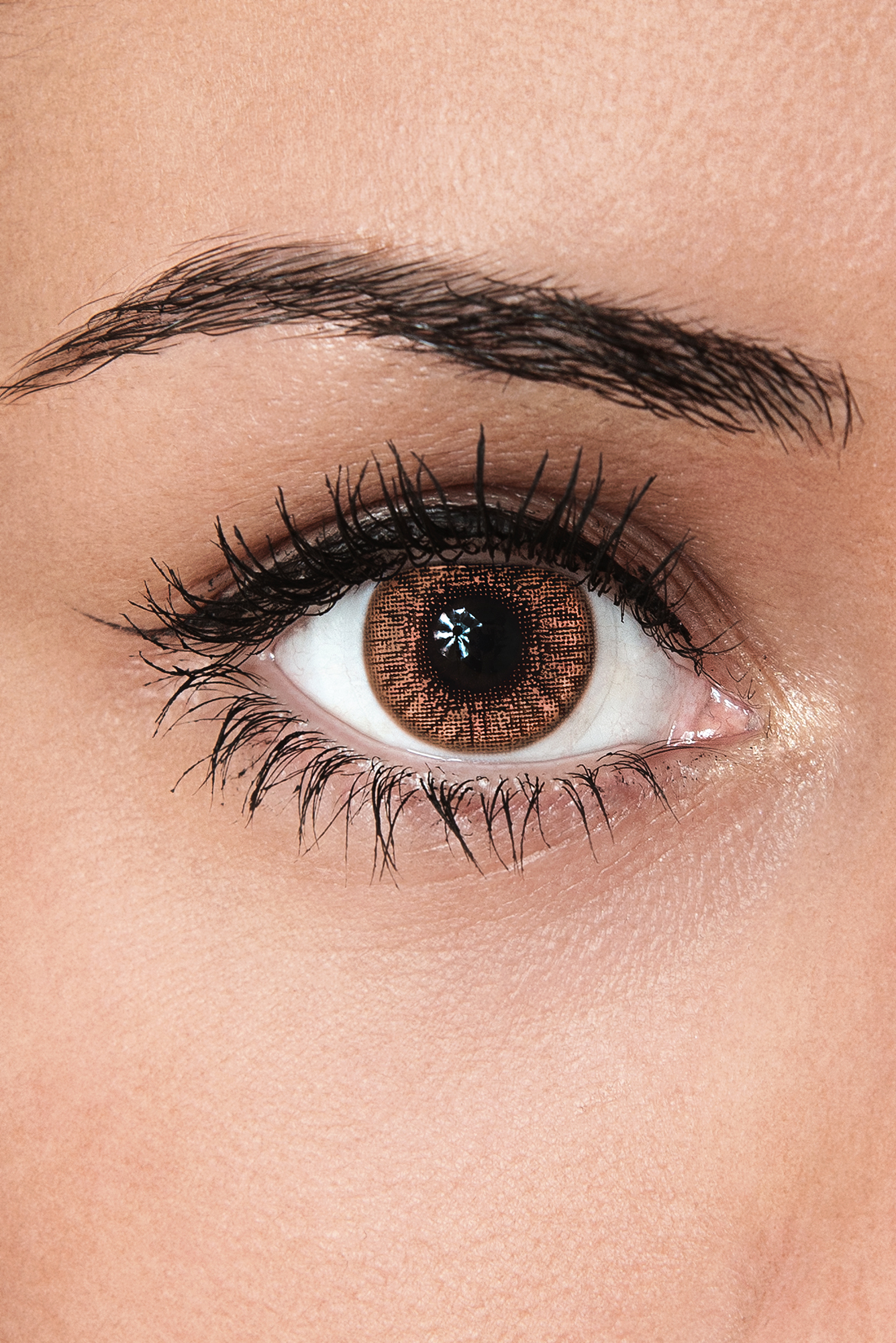 light brown contacts Gallery